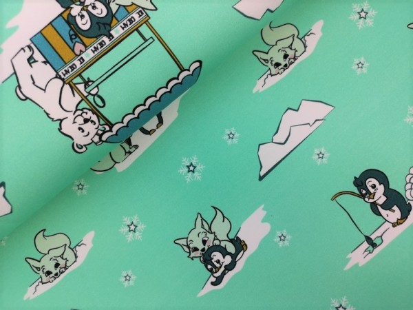 FrenchTerry Sweat Winterland in mint